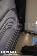 bedruckte-spannwand-spanndecke-lichtdecke-verschiedene-motive